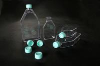 Tissue Culture Flasks (Tissue Culture Фляги)