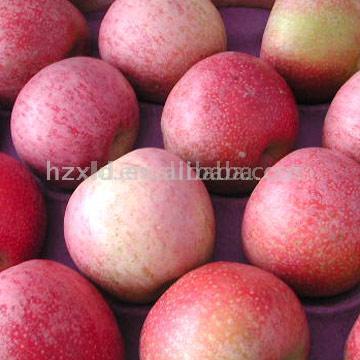 Apple (Яблоко)