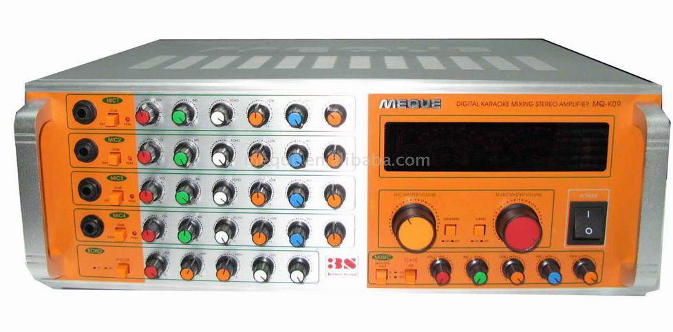 Digital Amplifier (Digital-Verstärker)