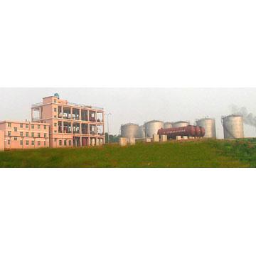 Bio-Diesel Plant