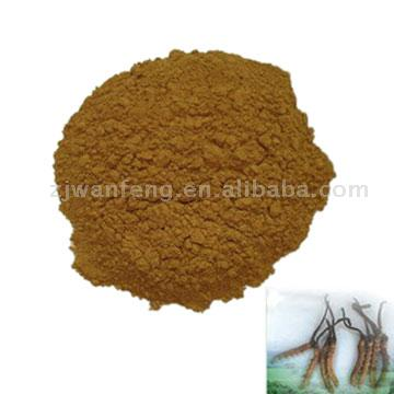 Fermentation Cordyceps CS-4 Powder