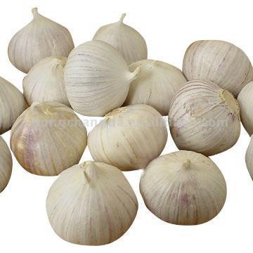 Single Garlic (Одноместные Чеснок)