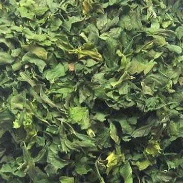 Dehydrated Celery Leaf