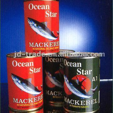 Canned Macherel