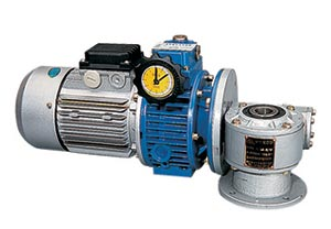 Combination of UD (L) Speed Variator and WJ Worm Gearbox (Сочетание UD (L) Вариатор скорости и WJ Worm КПП)