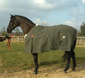 Horse Blanket (Попона)