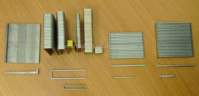 hardwood floor staples vs nails 3