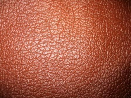 Garment and Bag Leather (Одежда и кожаная сумочка)