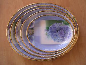 Plastic Oval Trays