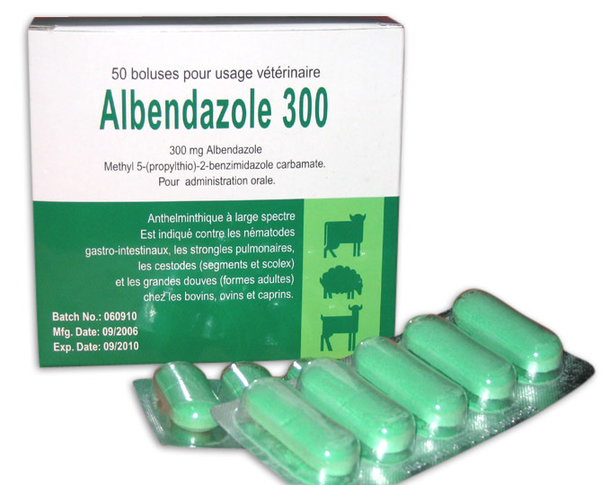 Albendazole Tablet (300mg) (Албендазол Tablet (300 мг))
