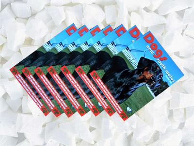 Magazines (Zeitschriften)