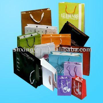 Paper Shopping Bag (Paper Shopping Bag)