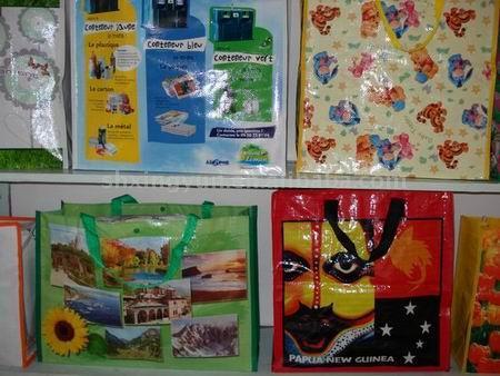 PP Non-Woven Bag (ПП нетканых сумка)