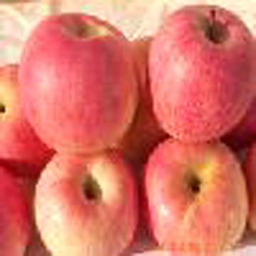 Fuji Apple ( Fuji Apple)