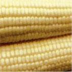 IQF Corn