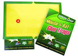 MR88010 Rat Glue Trap (Клей MR88010 Rat Trap)