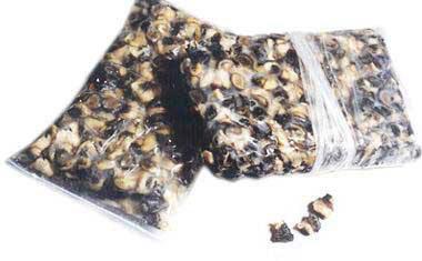Frozen Mudsnail Meat
