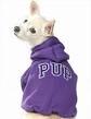 Pet Clothes (Pet Clothes)