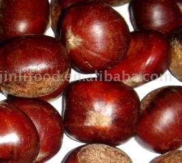 Fresh Chestnut (Fresh Chestnut)