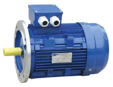 Y2 Series (IP54) Motor