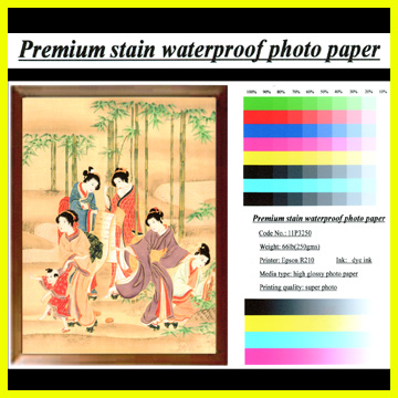 Premium Satin Waterproof Photo Paper (Водонепроницаемый Premium атласная фотобумага)