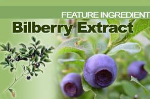 Bilberry P.E