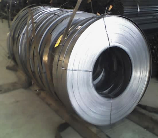 Cold Steel Strip (Cold Steel Strip)