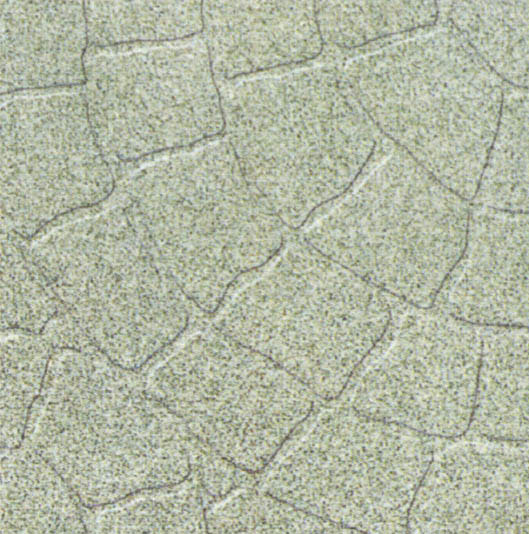 Anti-Slip Floor Tile (Anti-Slip напольной плитки)