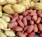 Peanut (Арахис)