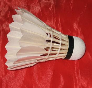 Badminton (Бадминтон)