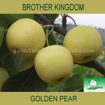 Golden Pear (Золотая груша)