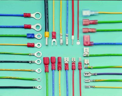 Wire Harness (Wire Harness)