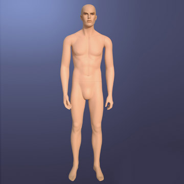 Male Mannequin (Male Mannequin)
