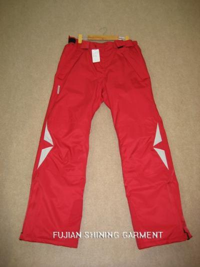 ski pants (Лыжные брюки)