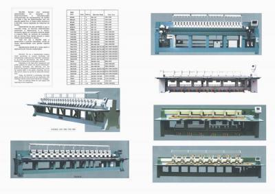 European RALIAN Embroidery Machine, Chinese Price (Европейский RALIAN вышивальная машина, китайская цена)
