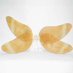 Fairy Wings Costume (Fairy Wings Costume)