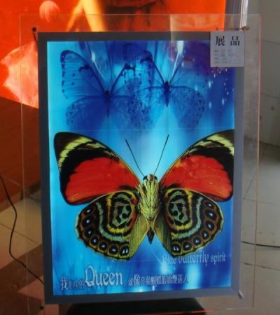 S2 ultra slim light box crystal frame (S2 Ultra-Slim Light Box Kristallglas)