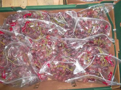 Crimson Grapes ()