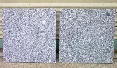White Grain Granite (Белый гранит зерна)