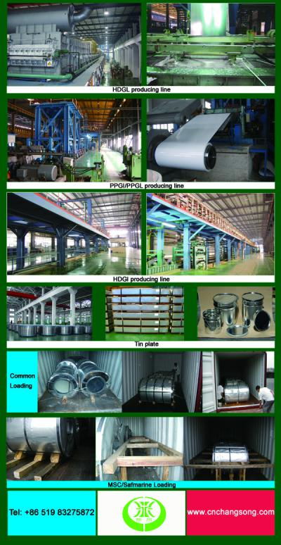 Galvalume steel coil ()