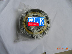 WQK Cylindrical Roller Bearing  NUP220E ()