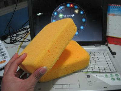 bathing sponge (bathing sponge)