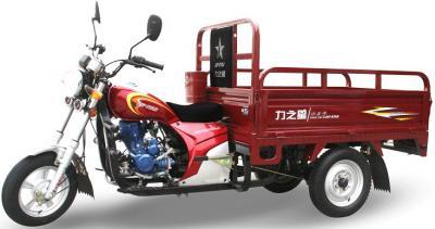 cargo trike (трехколесные)