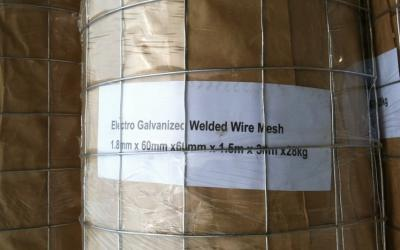 Electro galvanized(after welding)welded wire mesh ()