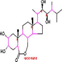 Brassinolide ()