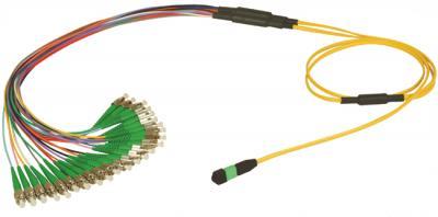 MPO Fan-out Patchcord Assemblies - FC/UPC - 4,8,12 and 24 fiber connector (МПО Fan-Out Patchcord Assemblies - FC / UPC - 4,8,12 и 24 волоконный разъем)