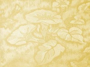 Silica Fabric (Кремнеземной ткани)