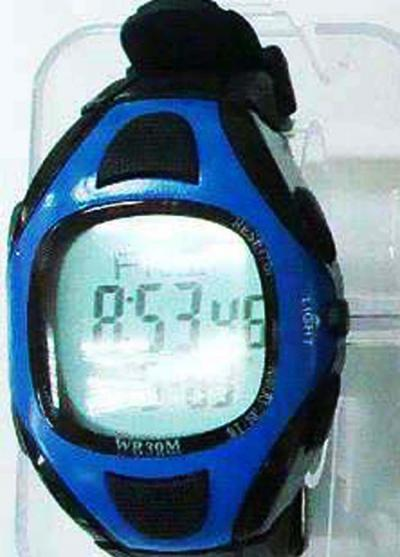 pulse watch (pulse watch)